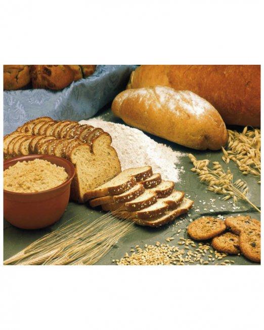 xylose bread